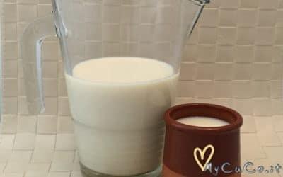 Latte di Soia autoprodotto con Cuisine Companion