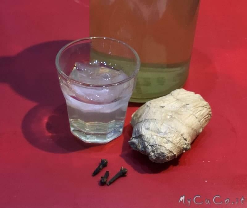 Liquore allo zenzero con Companion Moulinex