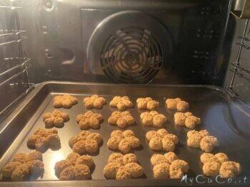 Biscotti con farina integrale di frumento e d'avena